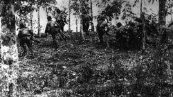 Japanese troops advance through a Malayan rubber plantation, December 1941.