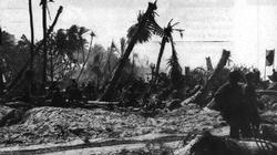 The American flag ' Old Glory' flies from a shell shattered palm tree on Makin Island, November 1943.