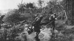 Troops of the 1st Byelorussian Front move though a German occupied wood near Bobruisk.