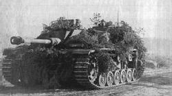 A Finnish Stug III moves up to the front during the summer of 1943.
